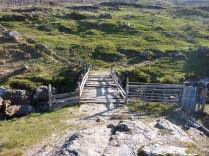 The Ricketty Bridge
