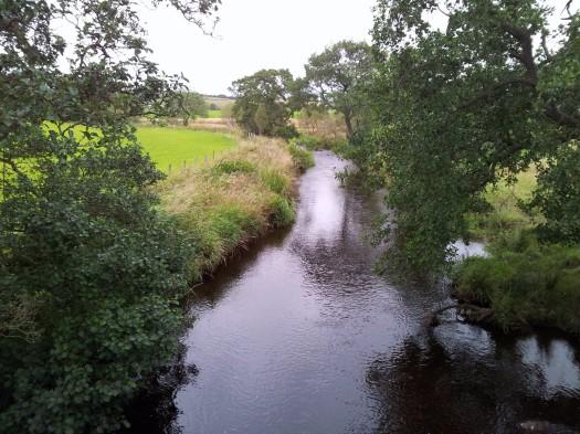 River Gryfe