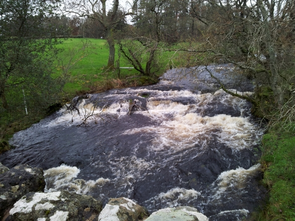 The Gryfe in good flow at Milton Bridge