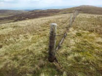 County boundary fence