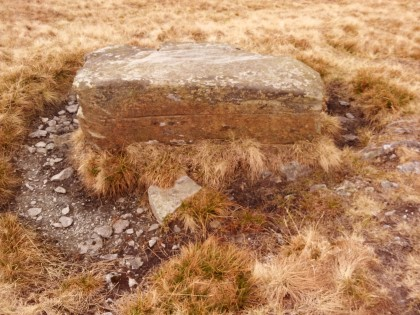 Altar stone ?