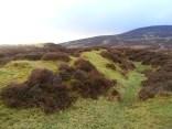 Hill Fort defences