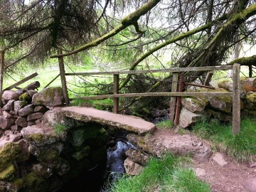 Locherwood Community Wood stone bridge
