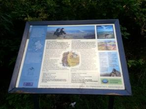 Llanberis info board