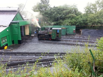 Mountain Steam Train at depot