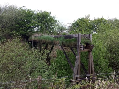 Old wooden viaduct