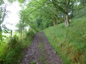 The initial track at Great Mell