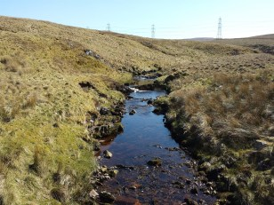 Left side Renfrewshire right side Ayrshire