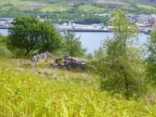 Ruin above the Gareloch