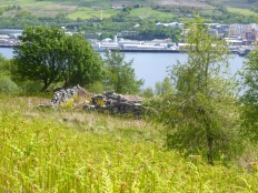 Ruin above the Gareloch