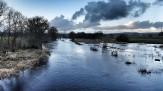 Moss rd bridge