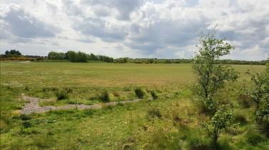 Carnoustie practice area