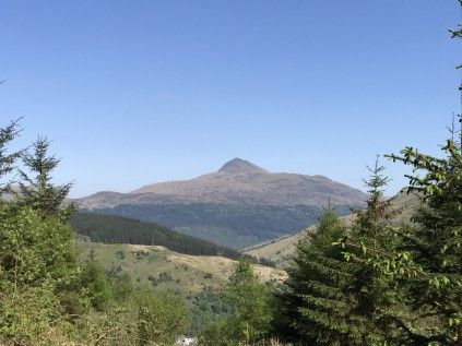 Ben Lomond from above the treeline