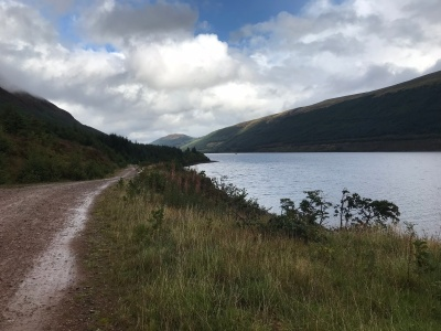 Loch Lochy from forest track