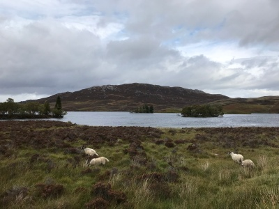 Loch Tarff and a welcome break
